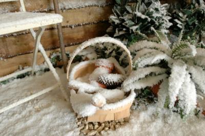 Бизнес по генерированию искусственного снега