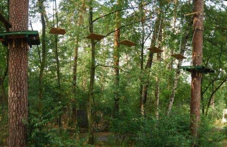 Бизнес-идея: веревочный парк