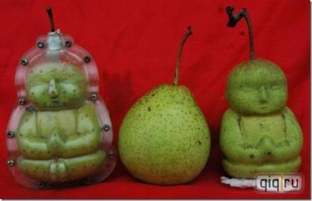 Овощи и фрукты необычных форм