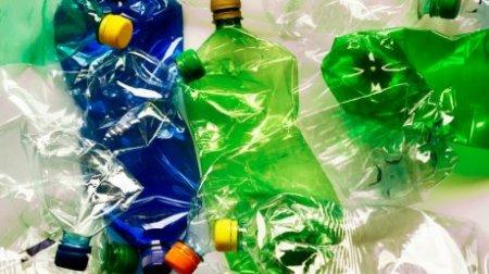 Сдача пластиковых бутылок