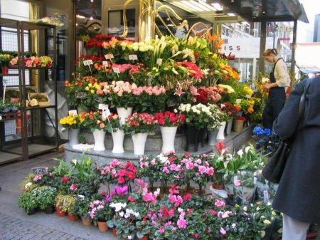 Собственный цветочный магазин